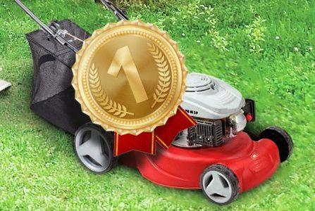 Beste grasmaaier op benzine