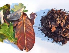 Bladzuiger blad versnipperen